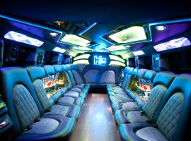 Grab everyone´s attention with trendy stretchlimo!
